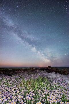 Dorset Night Sky